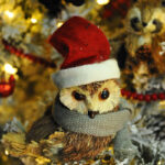Rogue Winterfest 2016 Trees A Woodland Christmas Owl with Scarf and Santa Hat