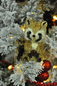 Rogue Winterfest 2016 Trees A Woodland Christmas Raccoon