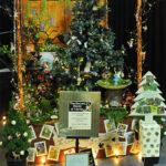 Rogue Winterfest 2016 Trees Secret World of Fairies Full Tree